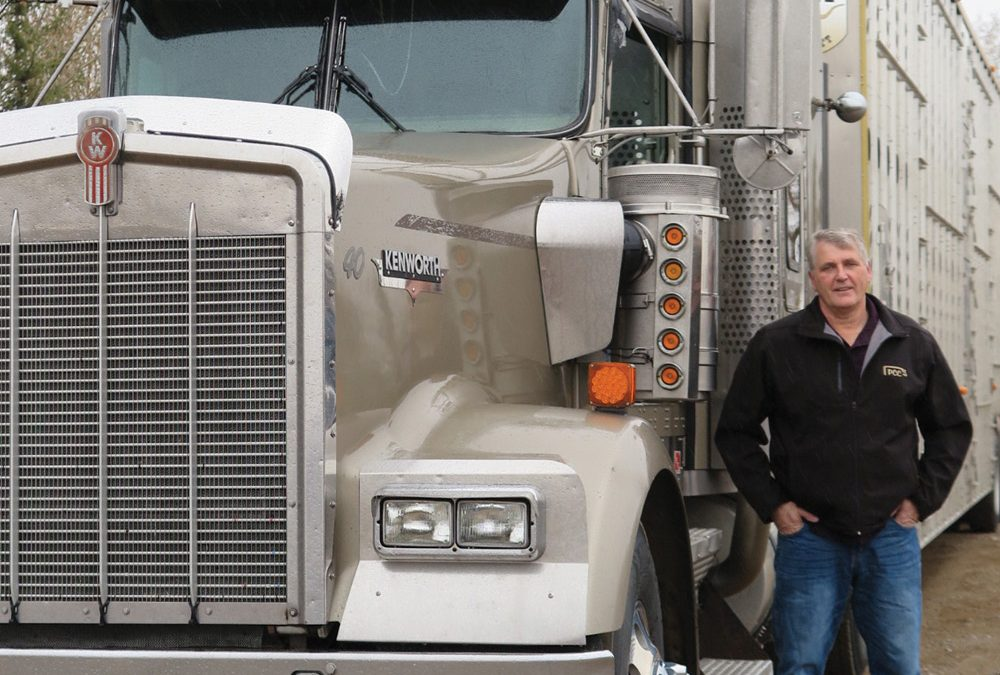 Taking a proactive approach to cattle transportation